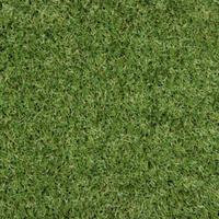 Штучна трава Oryzon ARCADIA