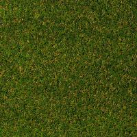 Штучна трава Betap MAGNOLIA
