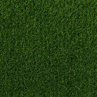 Штучна трава Betap ROLAND